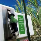 Vers la production industrielle de bioéthanol et de biohydrogène