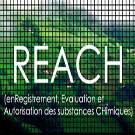 Nanotechnologies : REACH ne suffira pas