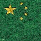 La forêt chinoise : un atout en danger ?