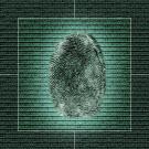 Comment sécuriser ses bases de données ?