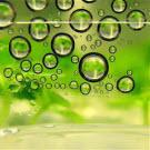 Biocarburants : un impact sur la réduction des émissions néfastes pour la santé humaine ?