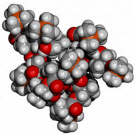 L'électricité pourrait aider à contrôler la polymérisation
