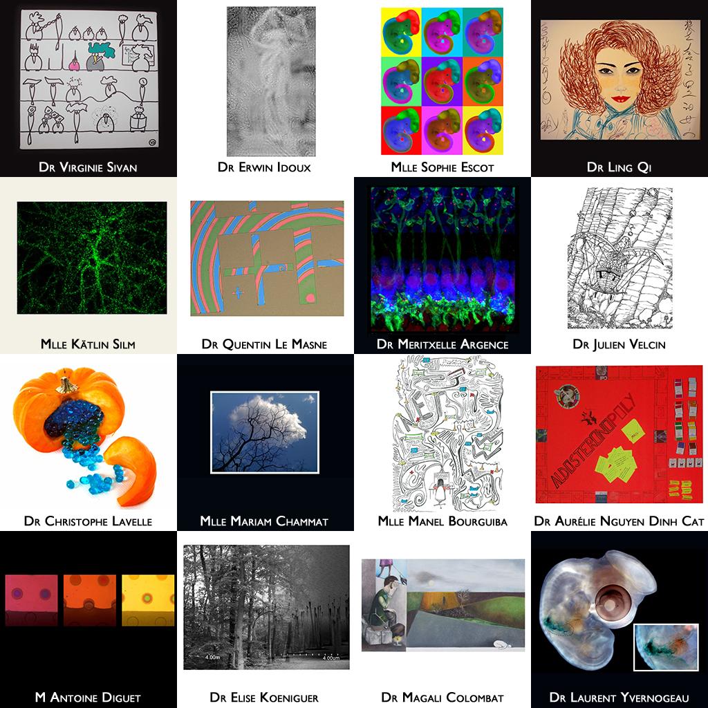 Et si vous faisiez de la science une nouvelle forme d'art ?