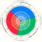 « Le circumplex™ pour mesurer scientifiquement la culture des entreprises »