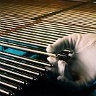 Caractérisation d'un gaz confiné à l'aide d'un capteur acoustique - Application aux crayons combustibles nucléaires