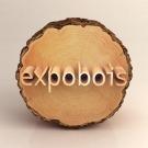 Découvrez les innovations lauréates des trophées Expobois !