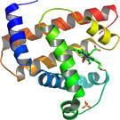 Un biocapteur ultra-rapide détecte et quantifie les protéines
