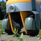 Des chercheurs ont mis au point un robot capable de détruire les mauvaises herbes