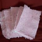 De-l-arbre-au-papier-et-inversement