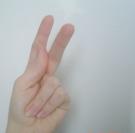 Une application pour traduire le langage des signes