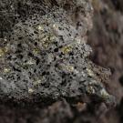 Du nouveau sur les origines de notre système solaire grâce aux cristaux d'olivine