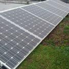 Associer photovoltaïque et végétalisation sur les toitures ?