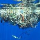 Cap sur la Grande Plaque de déchets du Pacifique Nord