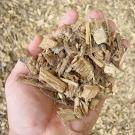 La-biomasse-bois-dans-la-transition-energetique