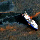 Capturer le pétrole pour mieux traiter les marées noires