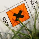 Les pesticides à l'origine de cancers