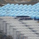 Le casse-tête de l'eau contaminée à Fukushima