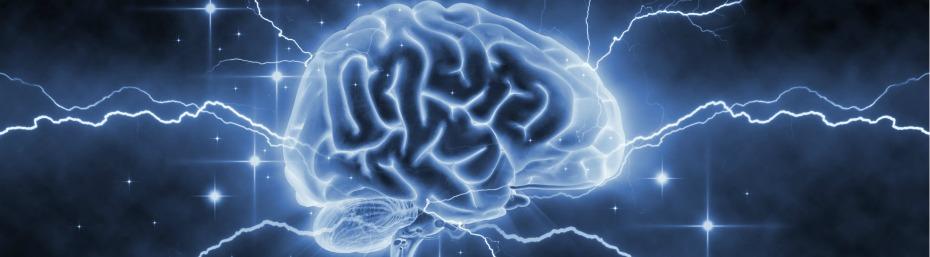 Cerveau: où en est la recherche?